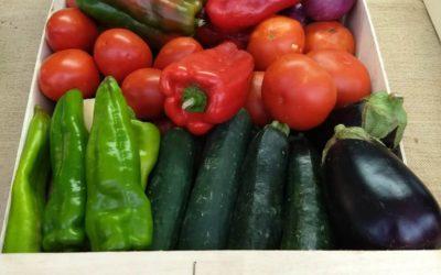 La nostra verdura a la Fira